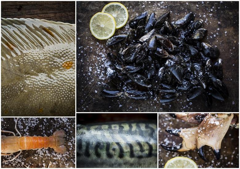 adamsen fisk gilleleje åbningstider